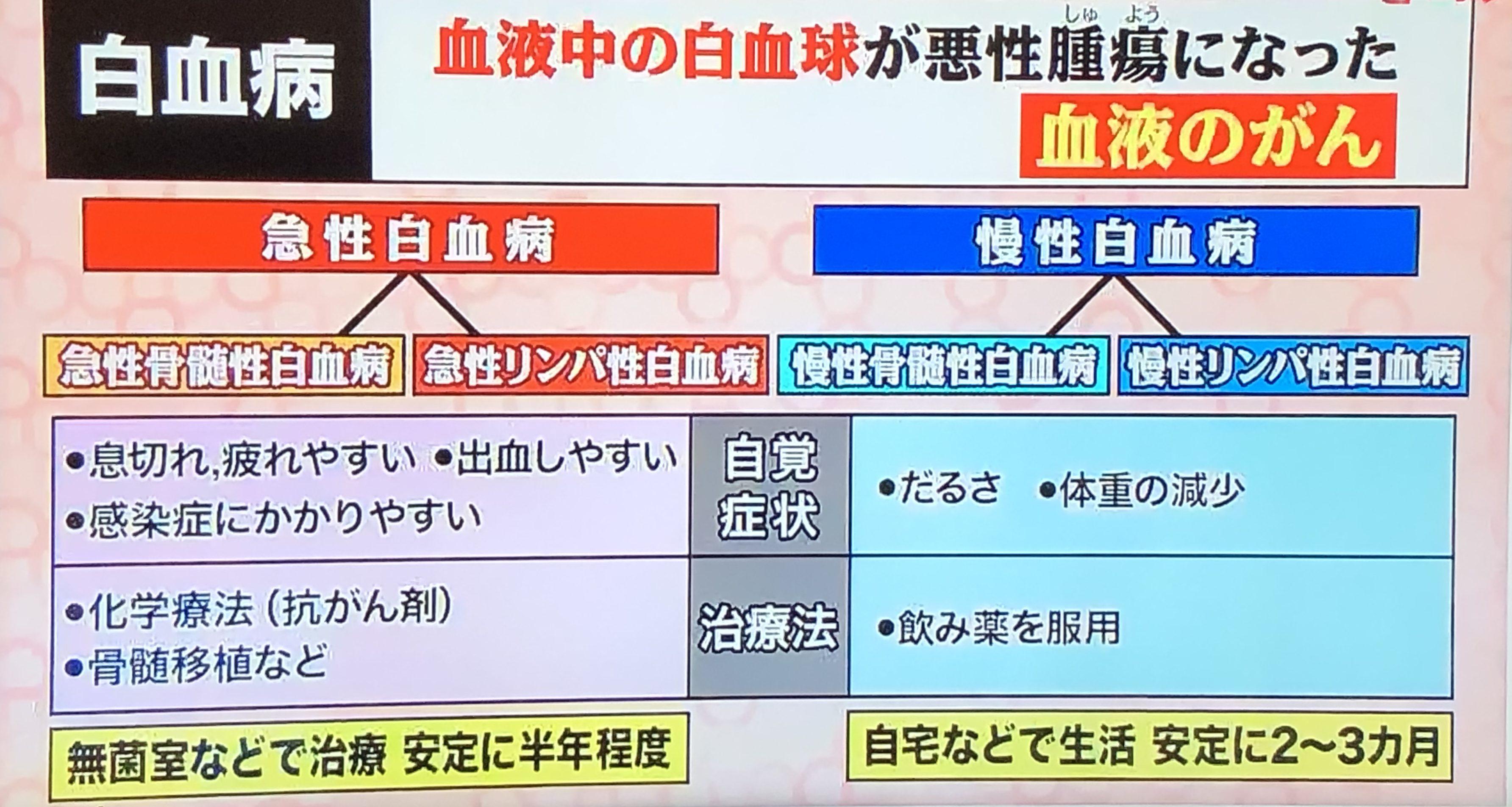 ナビタスクリニック Blog Archive 競泳 池江選手は急性白血病